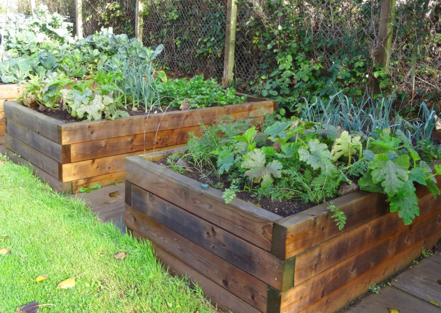 This is a tall wooden raised garden bed. These beds are great lined up next to one another. Since they are not very long, you can get many of them next to each other to increase the garden space.