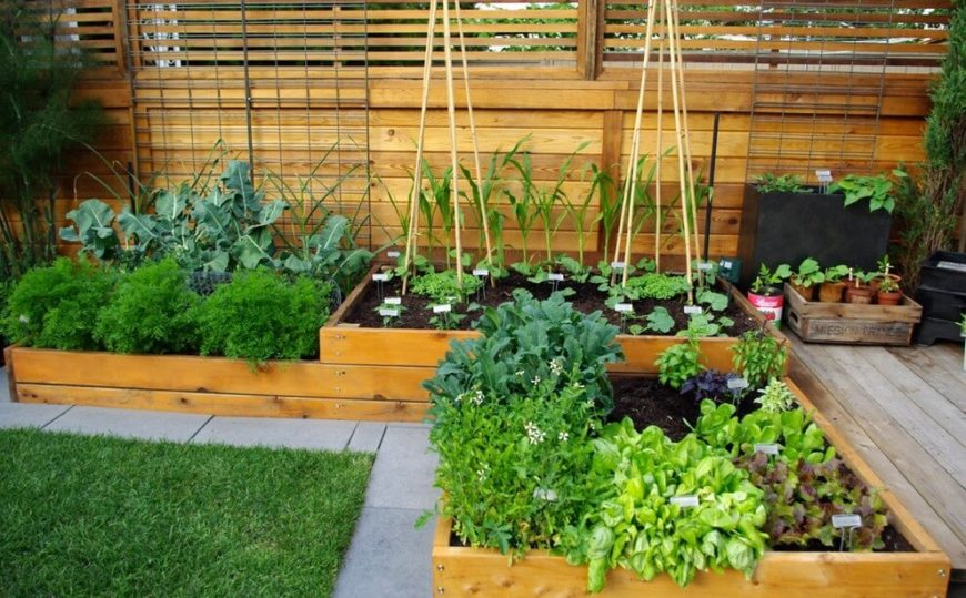 Here are some pretty well finished wooden raised garden beds. These are built in a way that there are multiple levels, which creates wonderful and interesting visual appeal.