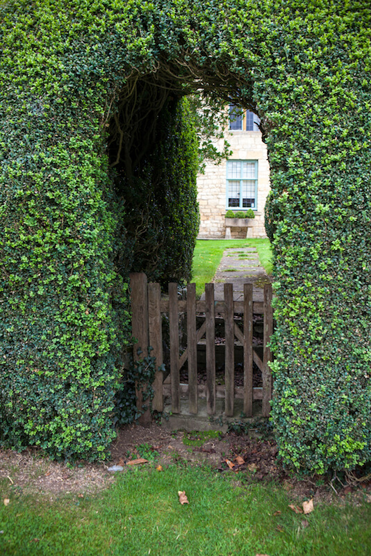 This is a non-traditional arbor created as a simple arch in a hedge, with only a gate as the structure.