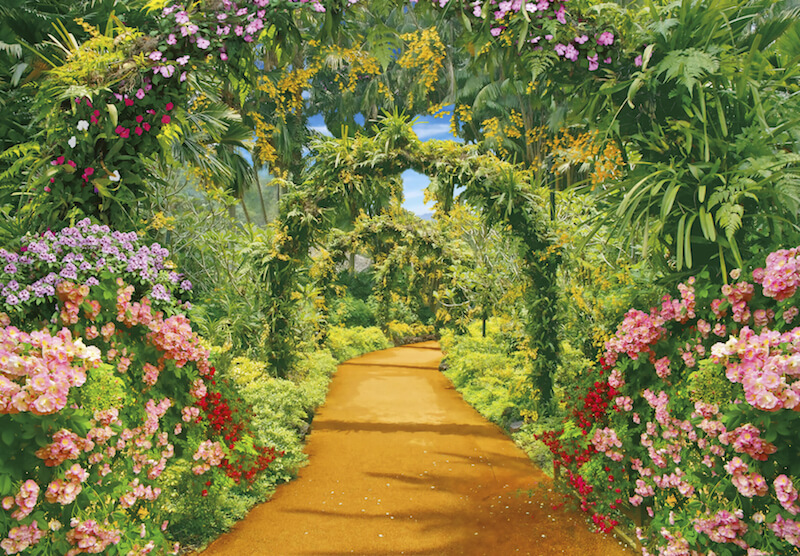 A tropical garden with bold flowers and totally overgrown arched arbors creating a fantastic tunnel.