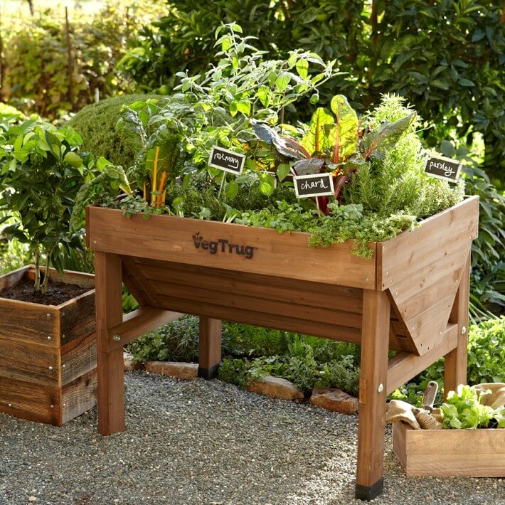 Here is an elevated planter that is great for a small vegetable garden. If you have a number of small vegetable plants, and are growing for personal use, this is ideal, as it is mobile, simple and the height makes it easier to manage.