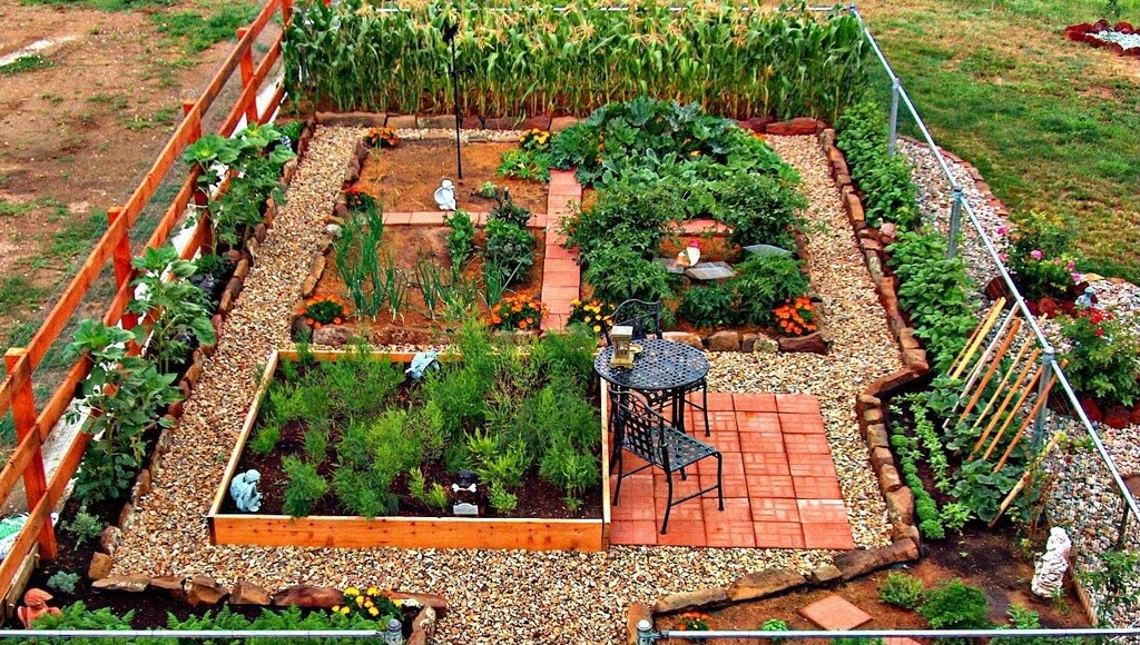 24 Fantastic Backyard Vegetable Garden Ideas