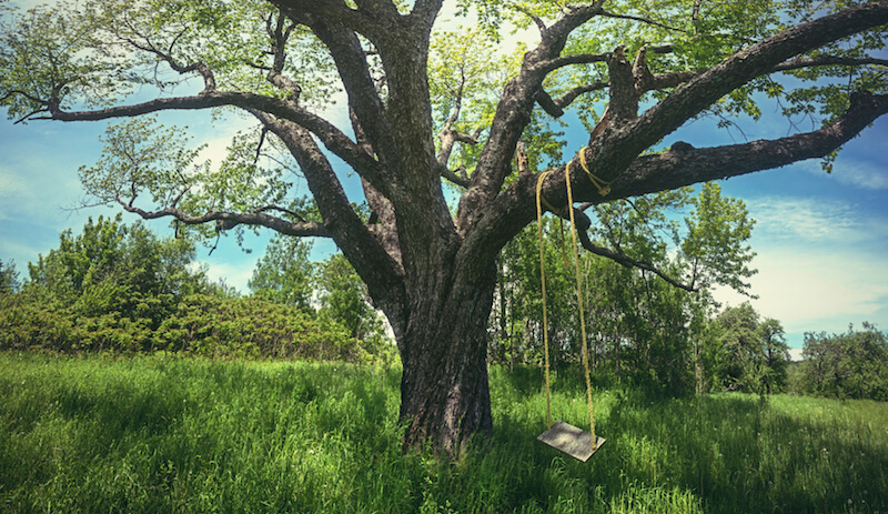 The quintessential swing design is a wooden plank hung by two ropes from a branch. This kind of swing can be homemade and is as sturdy as the branch you find to hang it from. This style brings an interesting and rustic country-style appeal to a backyard.