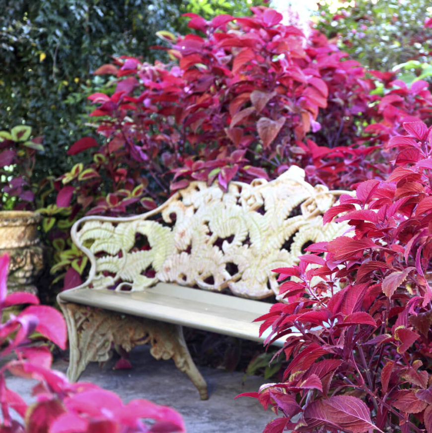 Some benches have intricate and detailed design elements. This bench has a detailed leaf and flower pattern that is an amazing compliment to a lush garden. This bench was made to be placed in a vibrant garden.