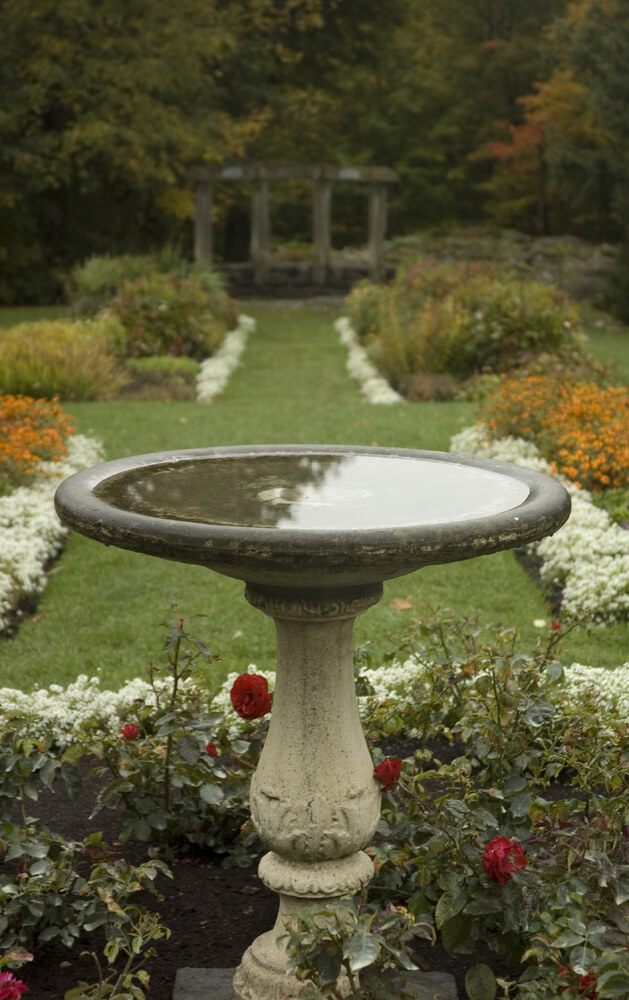Here is a simple and elegant bird bath amongst some flowers. This bird bath is simple but not without style and grace. This is a serene and amazing place for birds to gather.