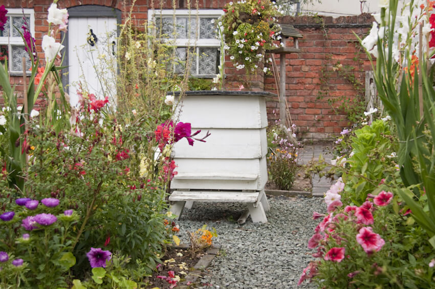 This old fashioned bee house is large enough to hold an abundance of hives, and looks perfect in a traditional garden setting. The siding makes it resemble a small house, which is a cohesive look for one of these boxes.