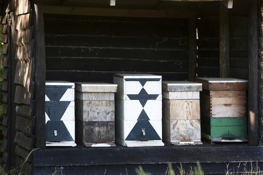 As they say, variety is the spice of life. The texturally and colorfully varied boxes here make a nice set of bee houses that are easy on the eyes and fun to interact with.