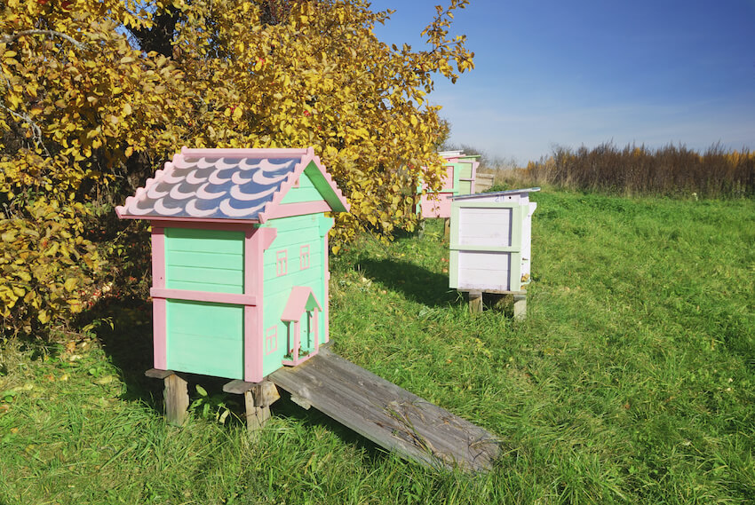 Nestled on the edge of an apple farm, these intricately detailed bee houses feature bright pastel colors and delicately styled facades. The miniature houses feature metal roofs for protection and easy access.