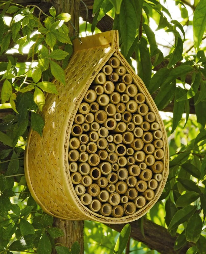 This uniquely organic-looking bee house is made from bamboo, guaranteed to last at least a year or two. The main draw is that it'll blend in with the natural environment better than most artificial hives, looking almost natural-shaped.