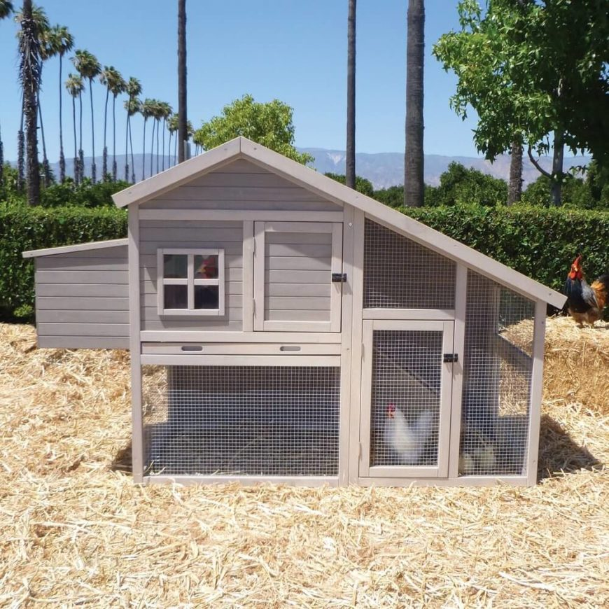 The angular profile of this handsome coop resembles a modern full-size home design, so much that it's one of our favorite structures. The ample mesh covering and secluded roosting compartments make it a very useful coop as well.