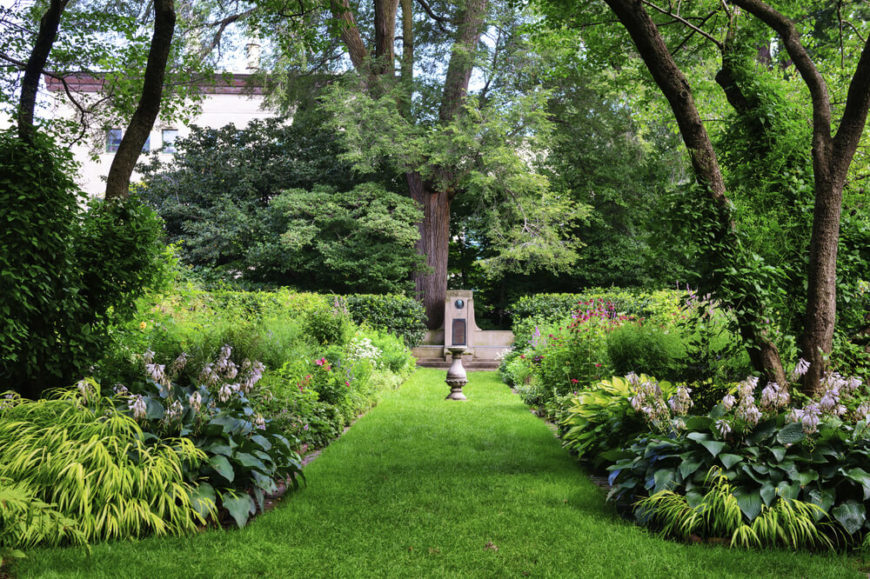 This lush plant garden creates a walkway between two lovely patches of plants, making a fabulous path through the yard.