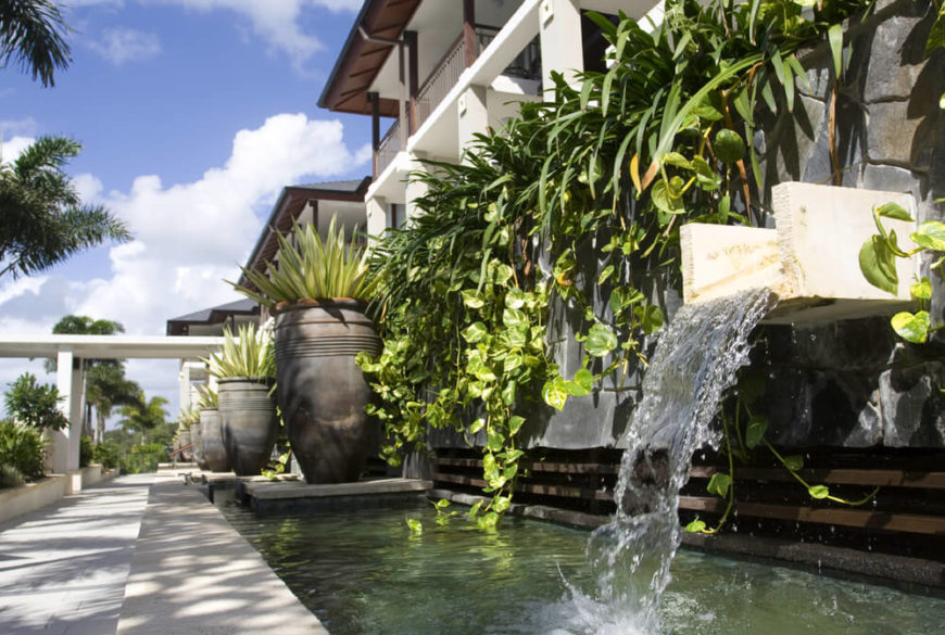 One way to accentuate your water features is to have hanging plant gardens. These hanging plants give manmade structures a lively appeal. Hanging gardens are one of the best ways to quickly cover a wall in greenery.