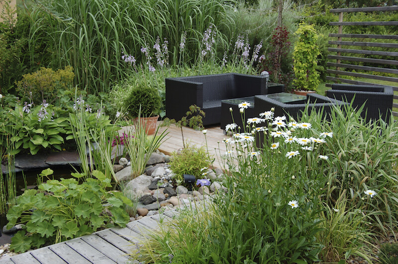 This fantastic pondside garden introduces the qualities of a wild marsh to the backyard. You can recreate different ecosystems in your yard with the right combination of plants.