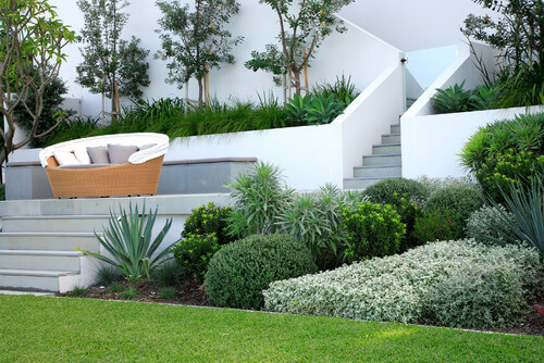 One way to build a dynamic and interesting plant garden is with a number of large bushes. Bushes take up a good amount of space and many can be trimmed into interesting shapes.
