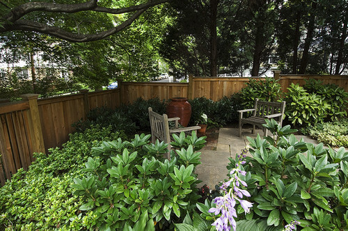 If you are not interested in mowing, you may choose to replace your entire lawn with large plants. This gives your yard depth and makes for an interesting look. You can sit on your patio surrounded by a consuming plant garden.