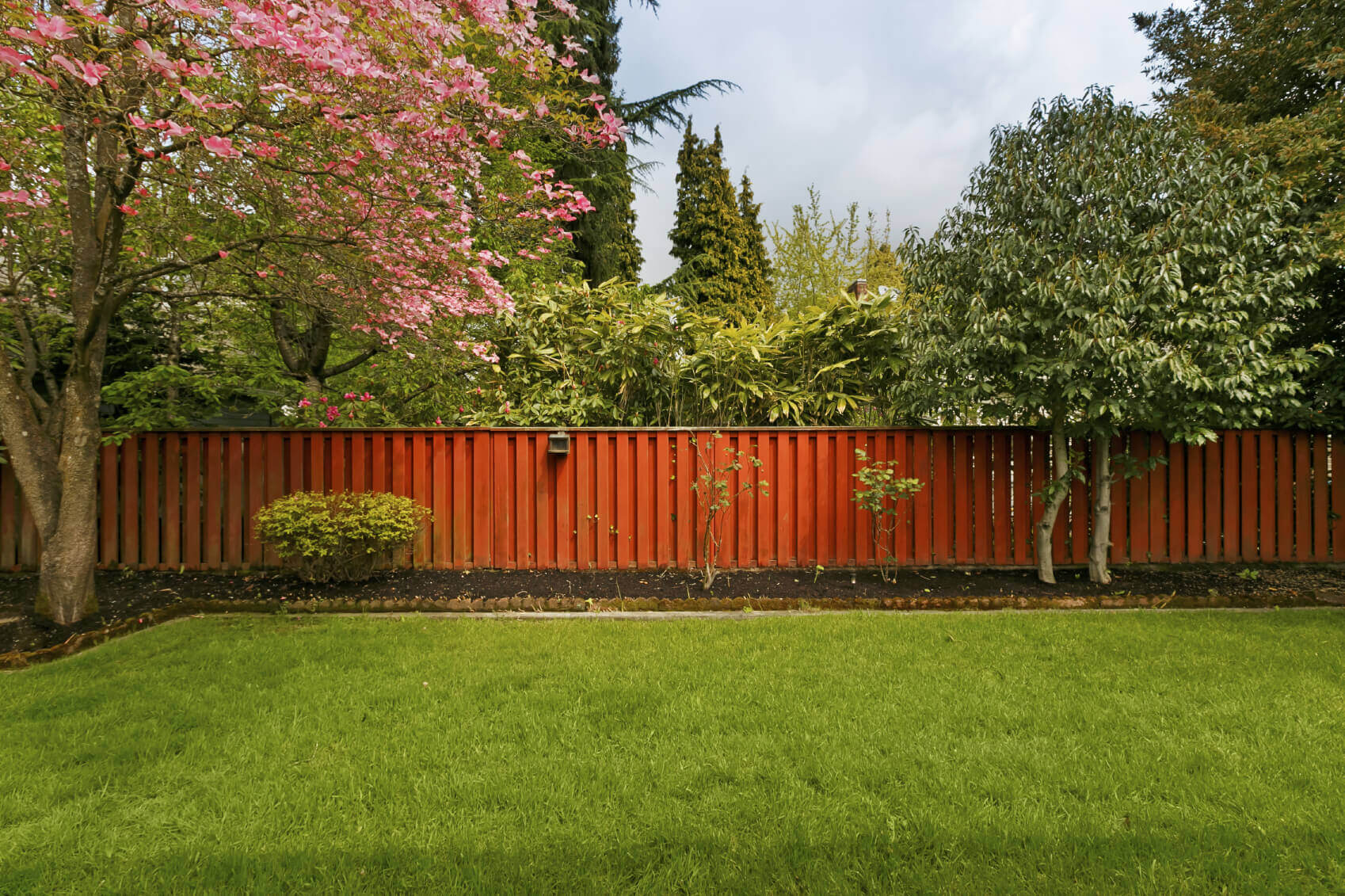 23 Brilliant Backyard Tree Ideas - Home Stratosphere