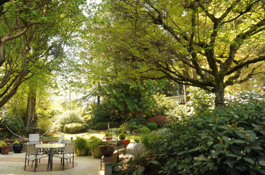 With enough mature trees you can build a complete canopy that will act as a ceiling to your outdoor eating area. You will be completely covered by natural shade in this magical space.