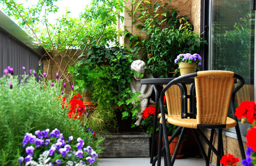 Small gardens can have a large variety of plants. Flowers and bushes work great for these kinds of gardens. This small garden has some tall plants that can even be seen over the fence.