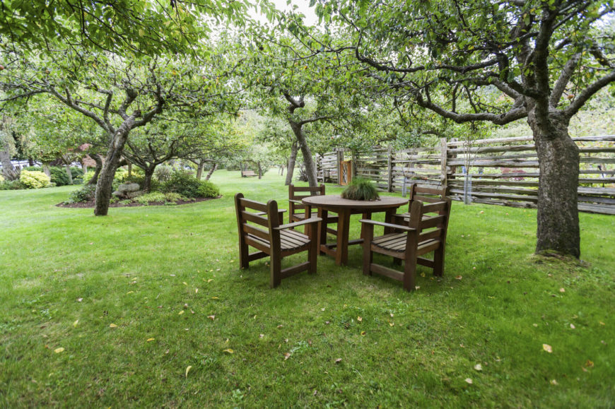 This nice little eating spot is located under some shady fruit trees. This is a wonderful place to sit back and relax. You don't even have to go back to the house to grab a quick snack.