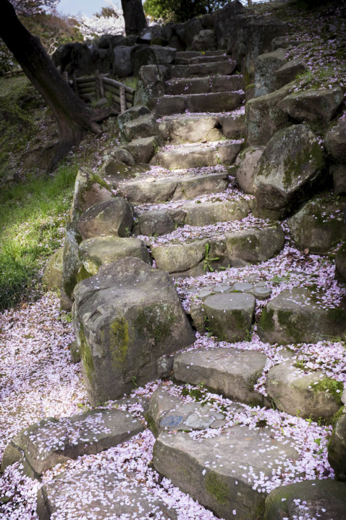 Here is another example of rugged steps. These steps are surrounded by other uncut rocks, making it appear as if these steps were carved out of a trail of boulders. This is a fun and rustic look that brings character to your yard.