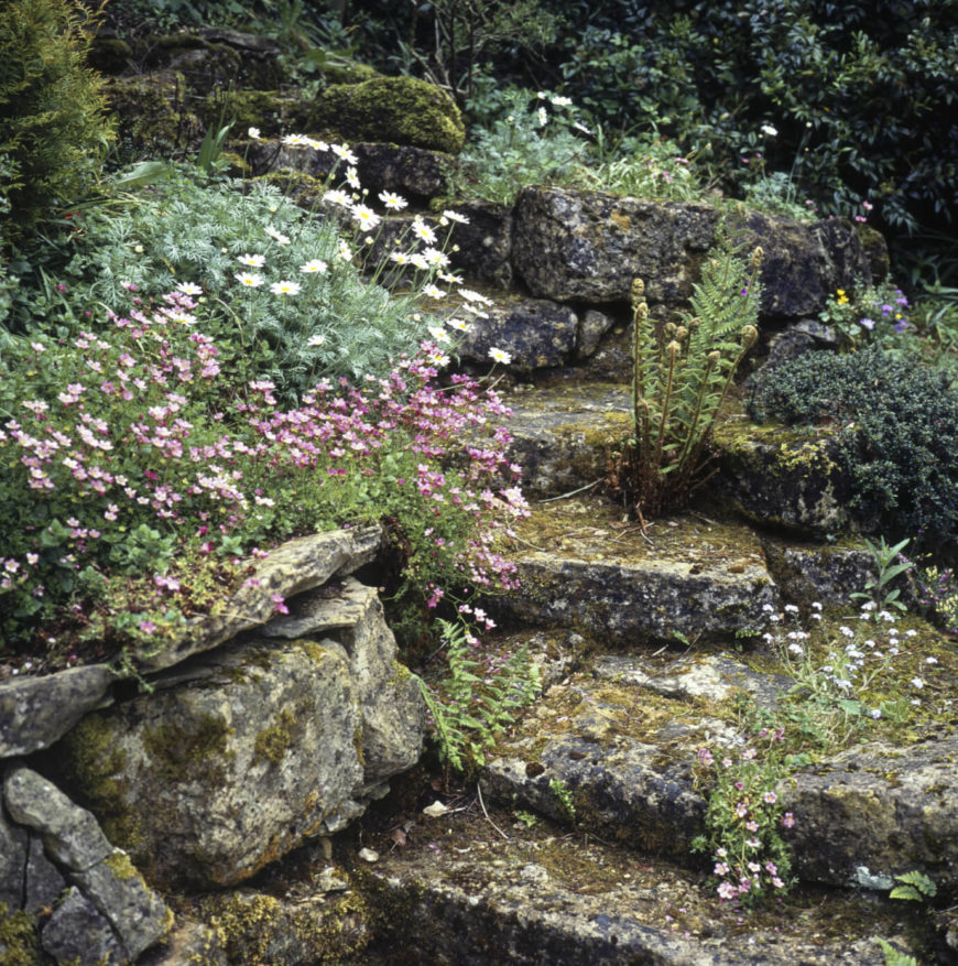 One of the best combinations you can have for real natural looking stone steps is rough cut asymmetric stone and wild growth. These stone steps are coated in moss and plants giving it a wonderful natural appeal.
