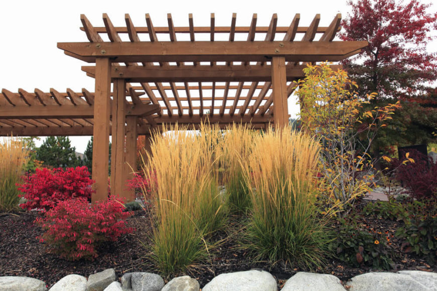 Here is a garden that uses small patches of tall grass to fill out the garden's profile. Grass is great for filling in otherwise blank spaces and providing great greens and yellows for the flowers to contrast against.