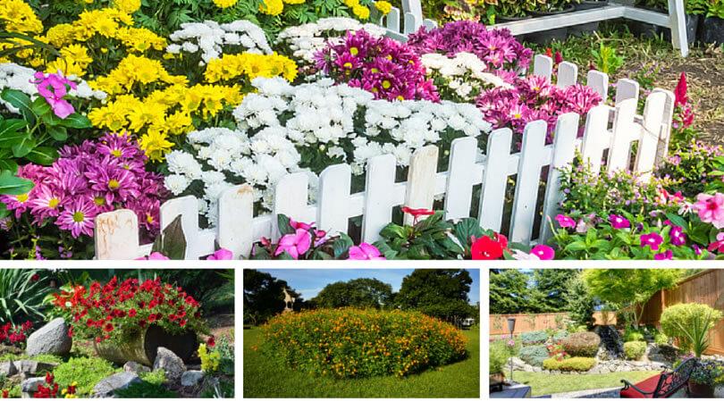 Collection of lovely small garden ideas.