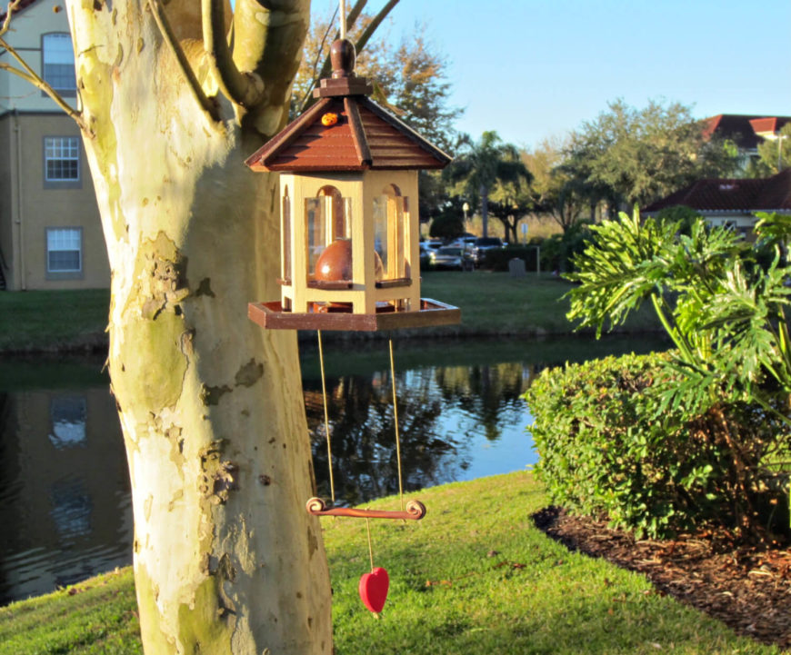 If you love birds you can entice them to your space with a feeder. This feeder provides room for lots of seed around a wide base so that many birds can come visit at the same time.