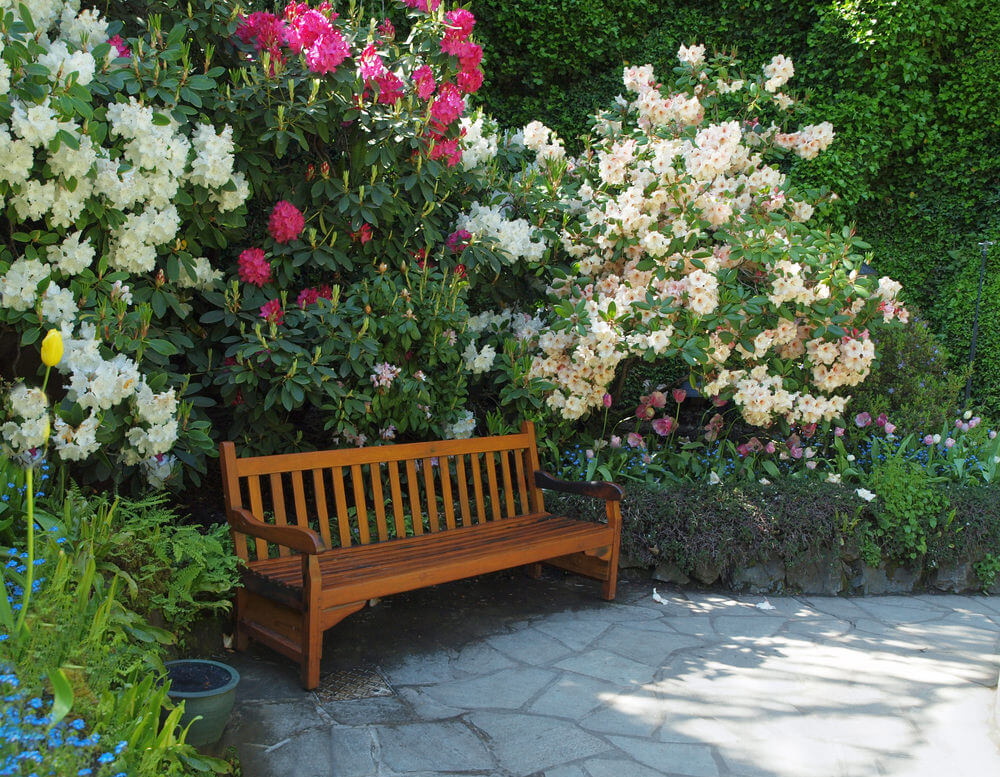 Sitting here early in the morning would let you see the first blooms and smell their sweet and lovely aroma. This wooden garden bench hiding in thick bushes is a perfect relaxation spot.