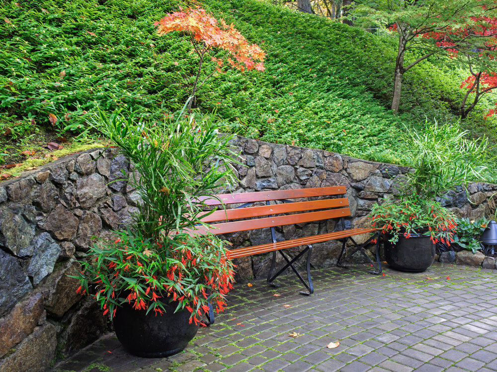 Along the stony wall leans a garden bench in wood and metal. After a stroll in the park, relax here and wait for some maple leaves to fall.