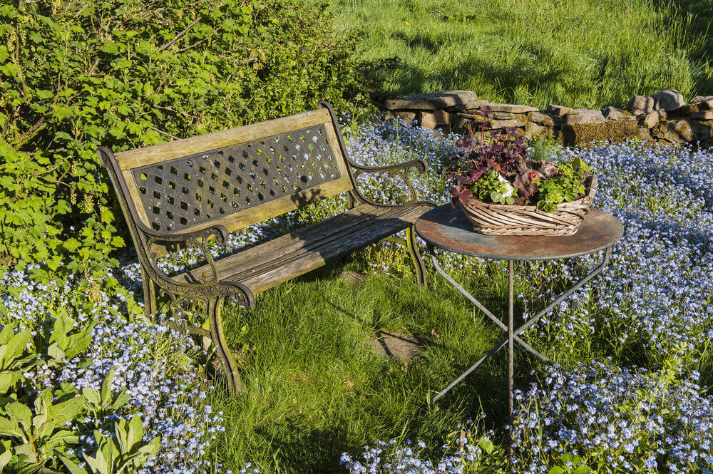 This vintage metal garden bench and coffee table may have been rusted by time but they're still fully functional. The colorful blossoms surrounding them give life and chemistry.
