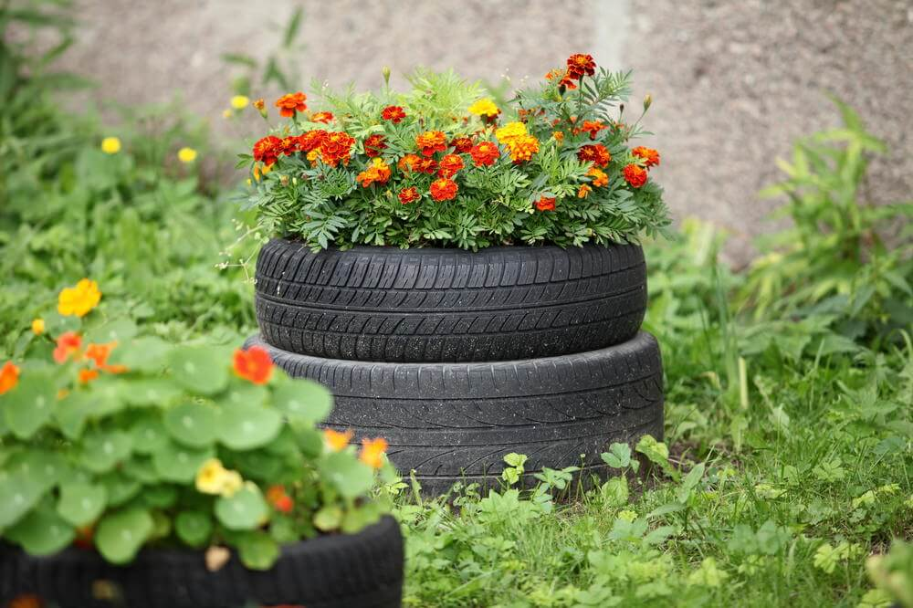 2 tires stacked on top of one another to create an elevated tire planter.