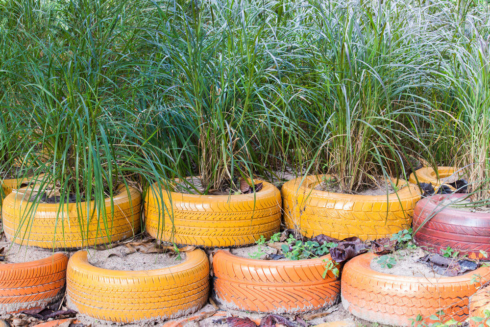 A stacked, long set of orange tires serving as planters for long grasses.