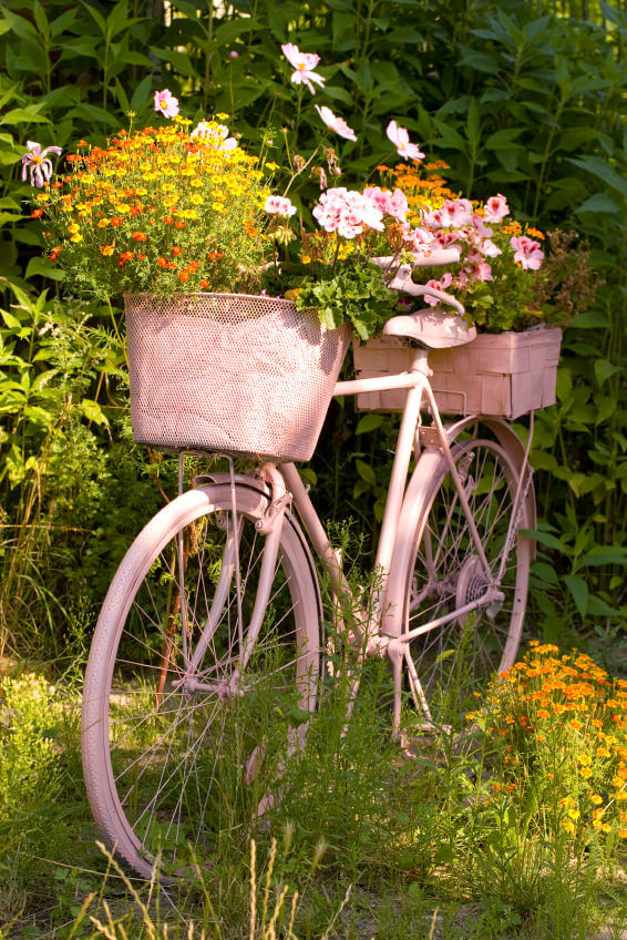 This is a pink bicycle flower planter.