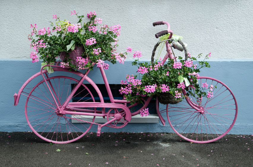 I love this bright pink bicycle that's a holder for pink flowers.
