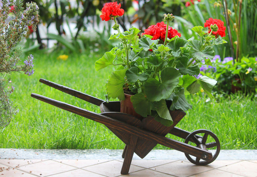 Super duper cute wood decorative wheelbarrow planter perfect for patios and decks.