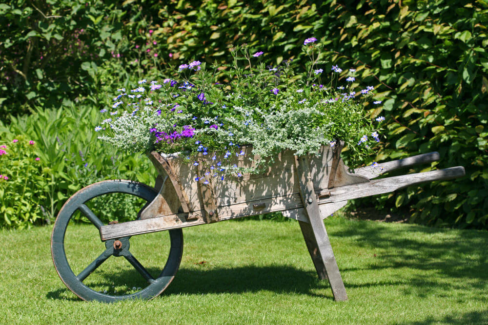 Handsome wood wheelbarrow planter with large wheel.
