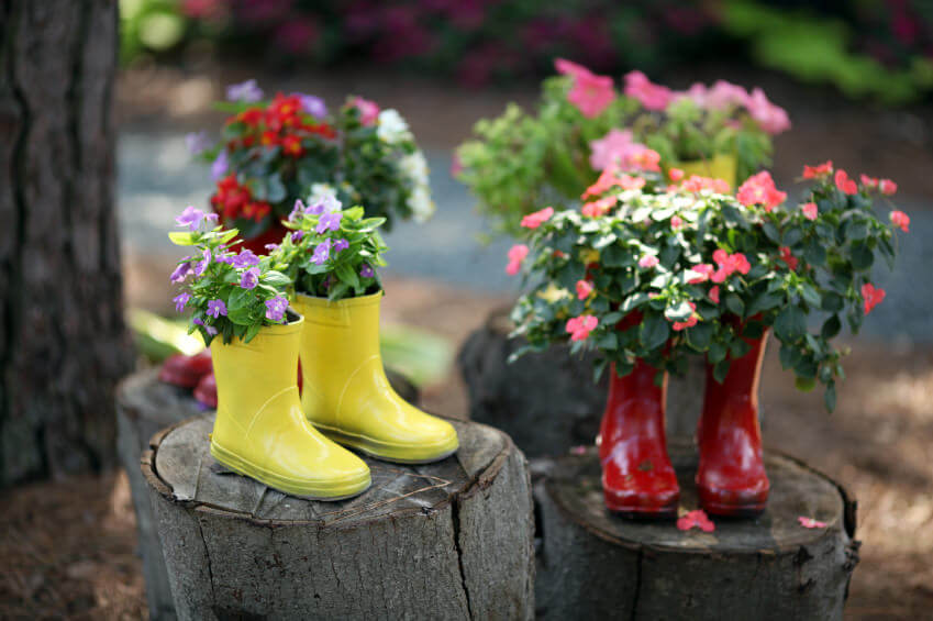 The pairs of yellow and red gumboots standing on a segmented tree trunk give an artistic feel. The brightly colored gumboots planters provide a playful contrast to the colorful flower plants and their lush green leaves.