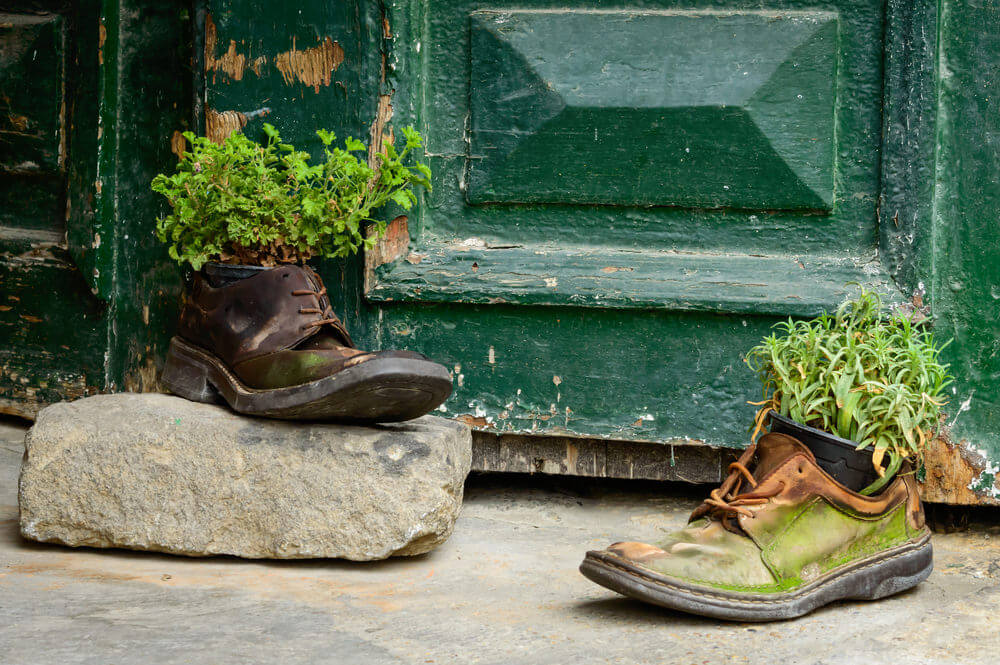 These shoes are old, moldy, and overly worn out by the years just like the big green door behind them. The rustic shoes used as herb planters and a backdrop of the homely green door make for a bucolic charm.