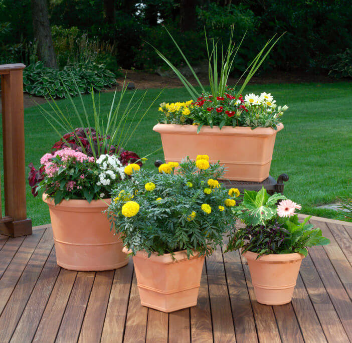 A terrific example of large and small potted plants in a grouping on a sun deck.