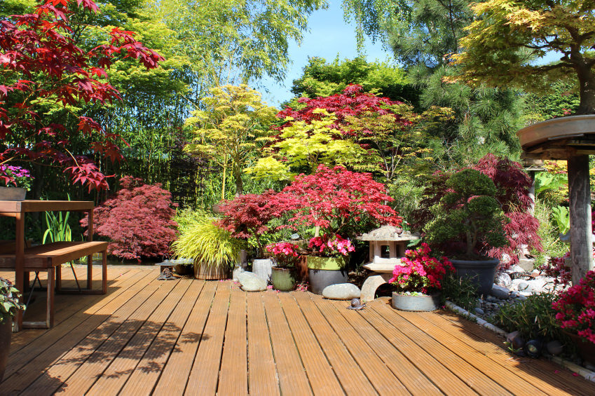 This is a zen garden on a deck that includes an terrific mixture of flowers and plants using a variety of pot styles.