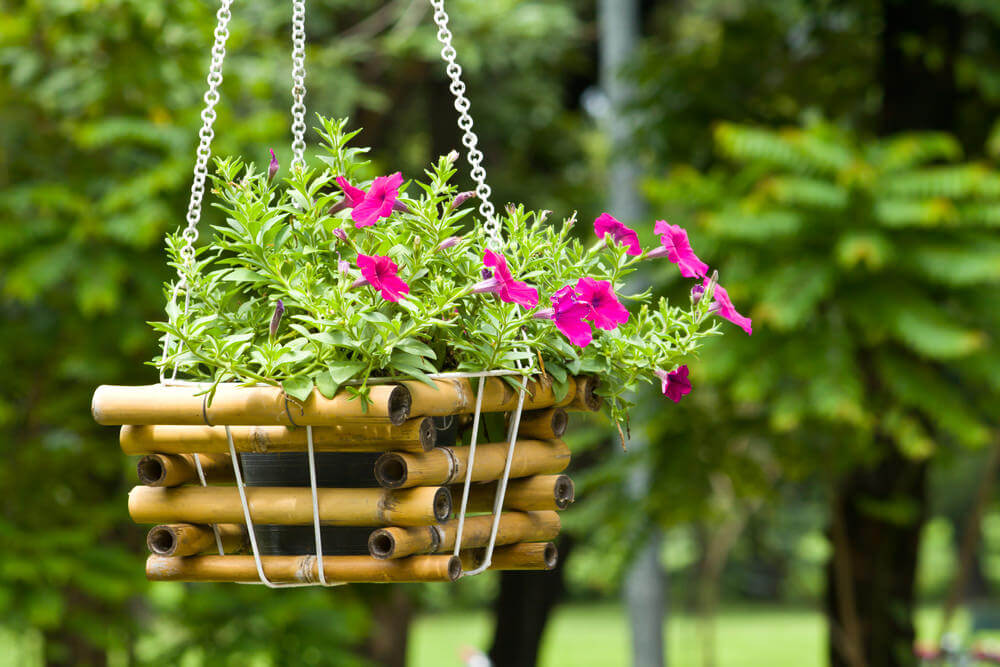 This hanging basket is an example of a small bamboo basket used to hold the flowerpot.