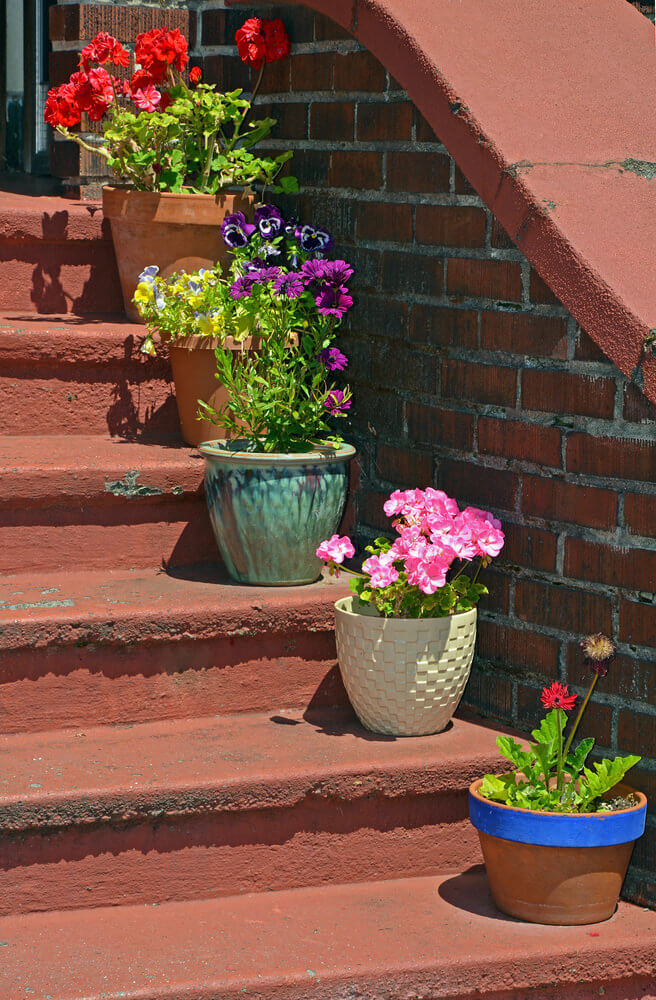 Light red steps match with the pots while still having different styles. There is a clay pot with a blue mouth edging, accented by ceramic, checkered, embossed, and plain pots planted with daisies, begonia and pansies.
