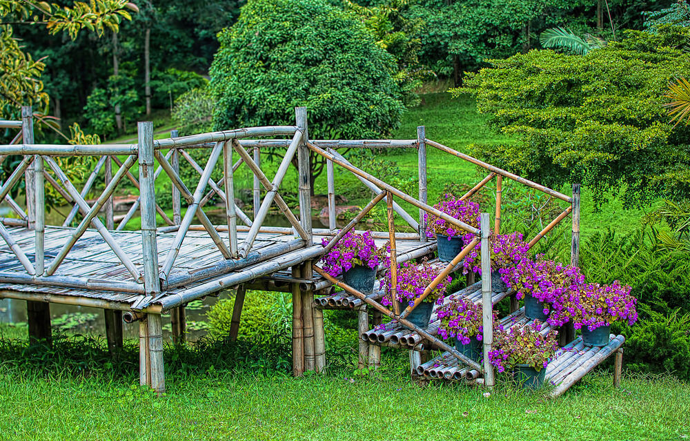 Weathered bamboo steps are accented by simple plastic pots. Among all the plants, the purple blossoms stand out among the rich, green landscape.