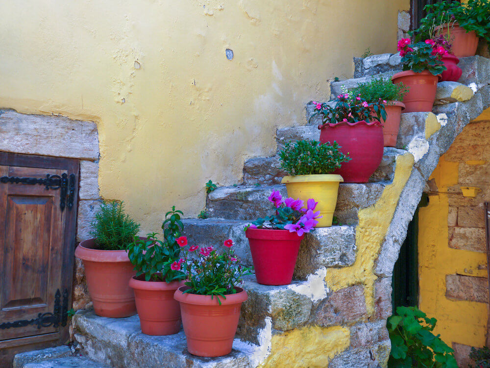 These pots manage to be more attractive than the flowers themselves. It occupies and covers the steps, making them more decorative than functional.