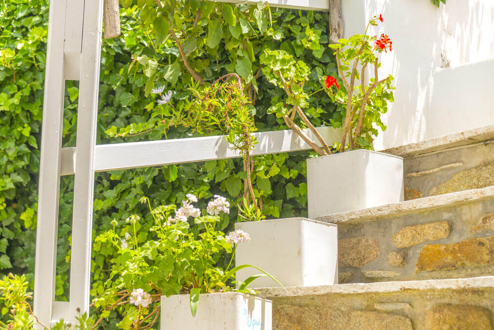 64flower-pots-on-stairs