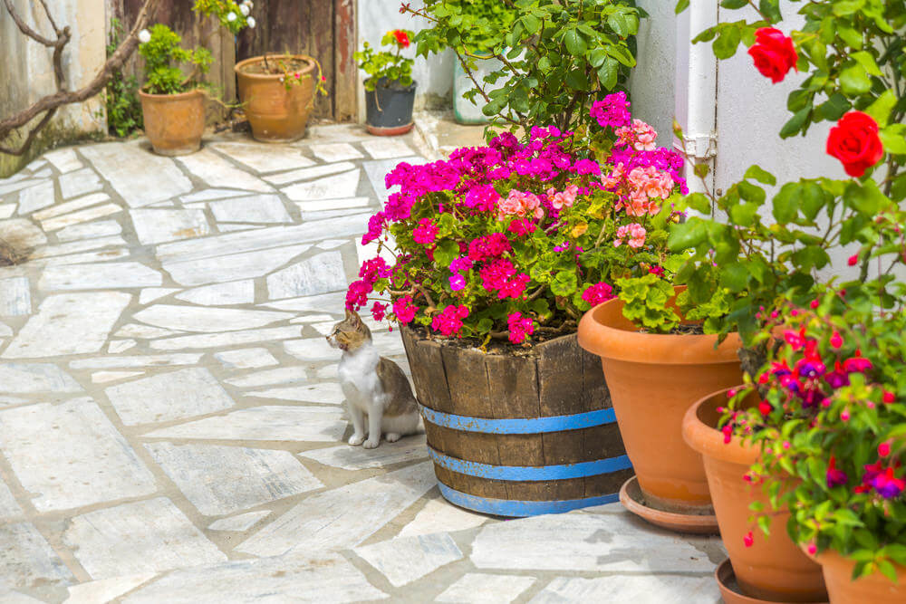 There are common plastic pots featured on this step, but the star of this landing is the unique one-of-a-kind wooden barrel planted with bright pink flowers.