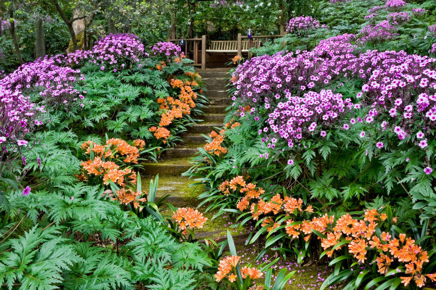 The garden's pathway is made elegant with the side-lining of purple and tangerine flowers in a sea of green.