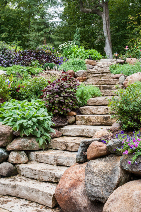 Landscaped stones make for the stairway that leads to a towering tree on top. The sides are accented by rounded boulders, varied green plants, and a sprinkle of colored flowers.