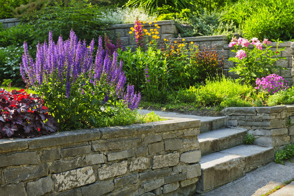 Shrub flowers such as lavenders, azaleas, diabolo, and perennial flowers are neatly tucked into place by the landscaped stone-styled planters clearly making way for the stony garden steps.